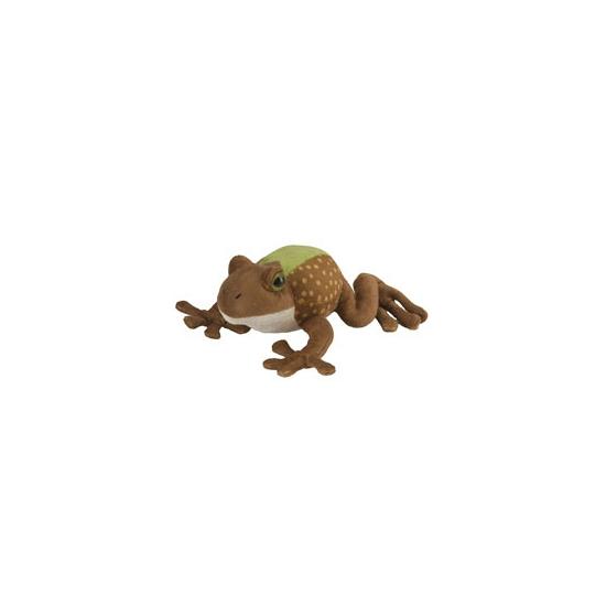 Groen met bruine kikker knuffels 18 cm