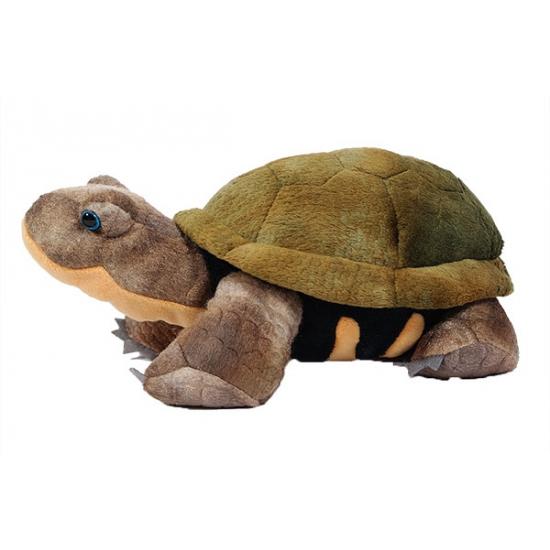 Dieren knuffels CartoonPartner Knuffel landschildpad 28 cm