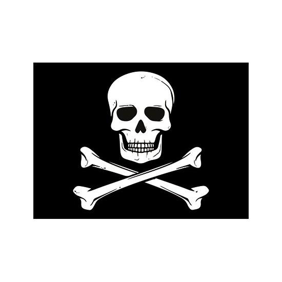 Piraten thema stickers 7.5 x 10 cm