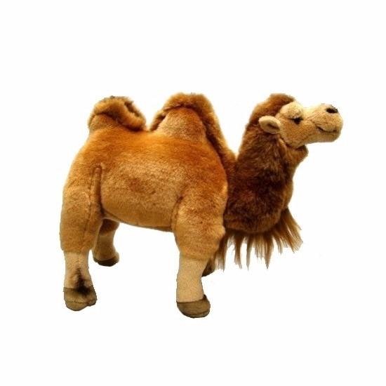 1664ea4ee2b9ed Pluche knuffel kameel 26 cm | Kameel & dromedaris artikelen